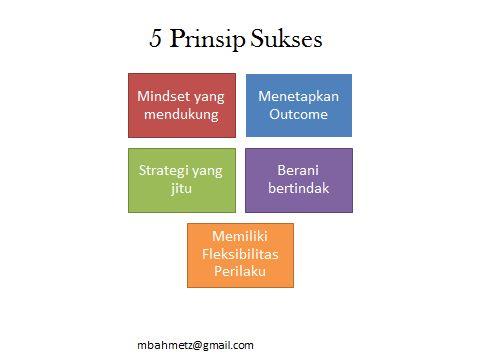 5 Prinsip Sukses : 1. memiliki Mindset Sukses yang mendukung, 2. Menetapkan outcome atau tujuan atau hasil akhir yang akan dicapai, 3. memiliki strategi pencapaian yang jitu, 4. Punya keberanian untuk bertindak atau melakukan strategi yang sudah disusun, 5. Memiliki fleksibilitas perilaku, artinya pada saat ingin mencapai outcome ternyata ada tembok penghalang, maka kita harus fleksibel untuk mengatur strategi baru atau bahkan outcome baru yang lebih realistis.