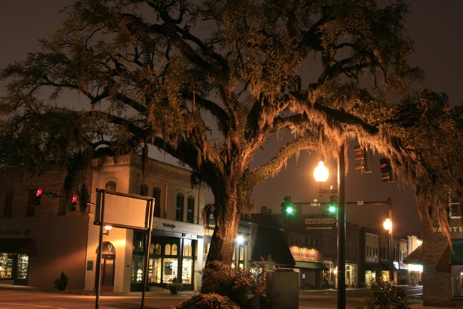 Beautiful Oak Moss tree Conway ,SC also known as the hanging tree during civil war times