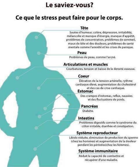 stress et le corps