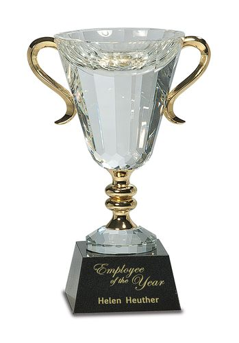 Trophy World is a U.S.A. based trophy shop and supplier of a large collection of Crystal Awards and Trophies | Crystal Engraved Awards at trophyworldllc.com. Buy Trophies, Medals, Crystal, Acrylic and many gifts that you purchased at the right price. Contact us: 888-275-9085