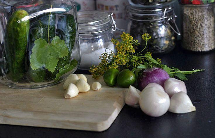 Kvašené slané okurky Malosolnyje ogurci   Veganotic