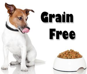 what is the best grain free dog food