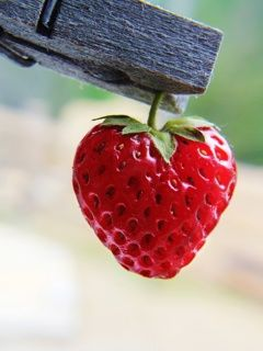 Natural Heart--strawberry