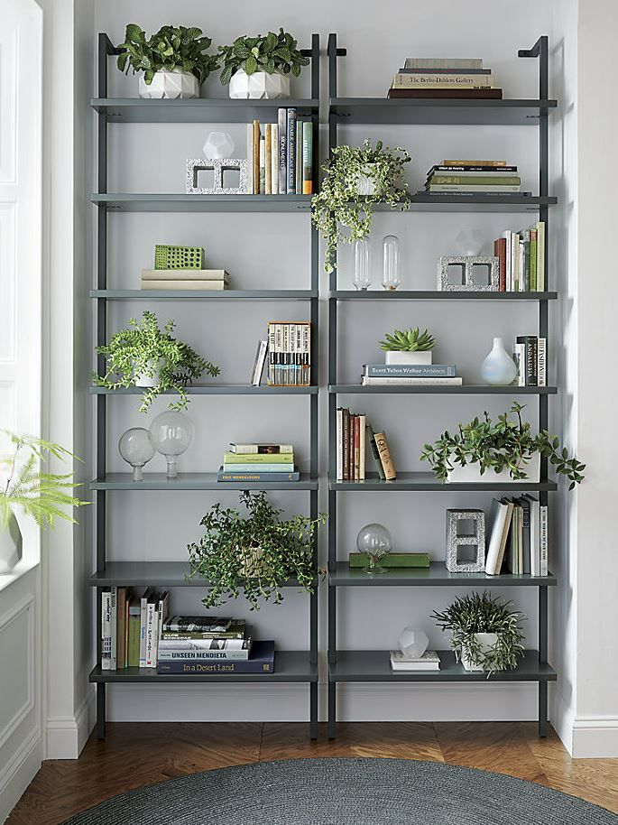 Potted plants on wall-mounted bookcases