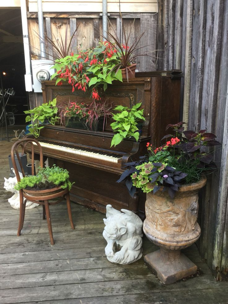 22 Best Piano Garden Images On Pinterest