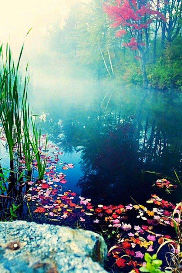 Beautiful Nature Photographs, Stowe, Vermont (15 Photos)