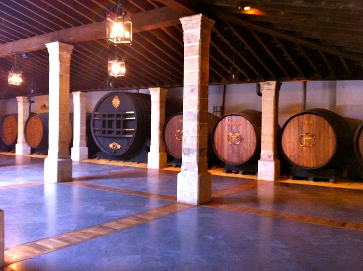 Bodegas Gonzalez Byass.  #Jerez   http://www.nanilabradoor.es/