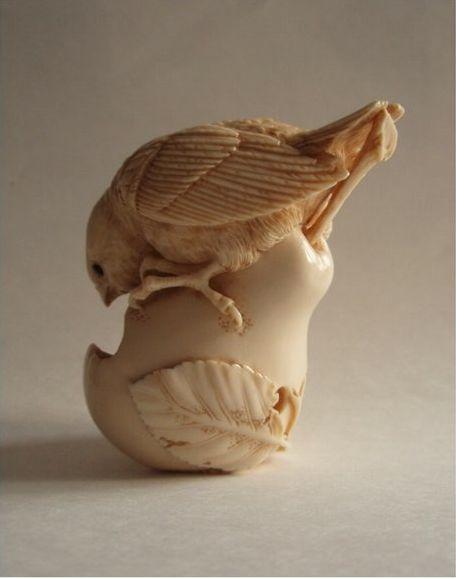 bird on pear