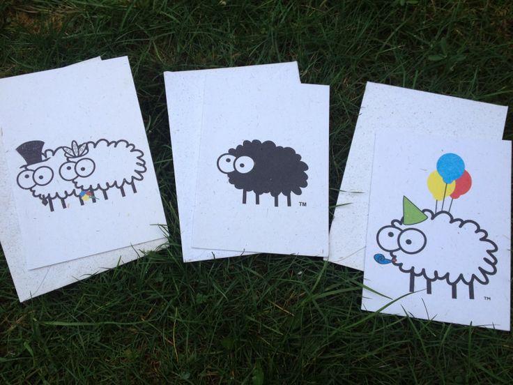 De Sheep Poo Paper kaarten hebben grappige namen als 'I love ewe' en 'Birthday bleetings'. Ik heb een verjaardagskaart, een wenskaart voor huwelijksgeluk en een black sheepy kaart gekozen.