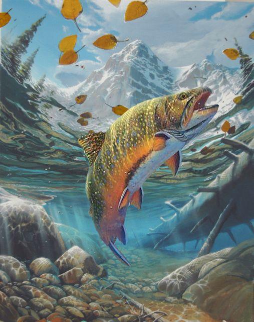Freestyle Artist Lowell Shapley - Trout in Colorado