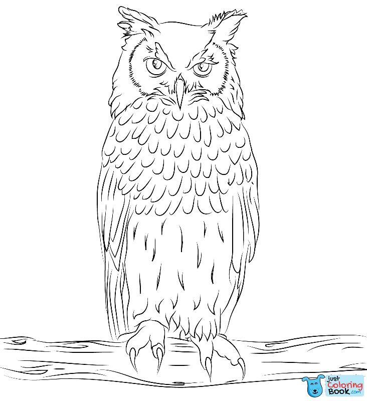 Bengalese Eagle Owl Coloring Page Free Printable Coloring Pages Intended For Free Printable Bengalese Eagle Bird Coloring Pages Owl Images Owl Coloring Pages