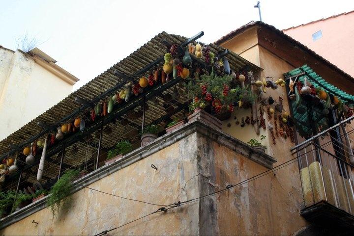 house in Sorrento