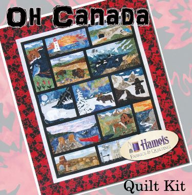 Image result for quilts 150th canadian anniversary