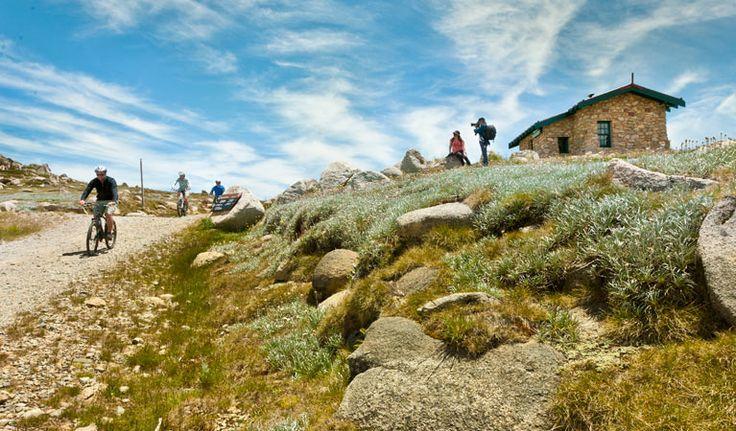 Mount Kosciuszko Summit walk, Kosciuszko National Park. Photo: Murray Van der Veer