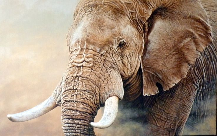 Latest Original Wildlife Paintings by Alan M Hunt For Sale