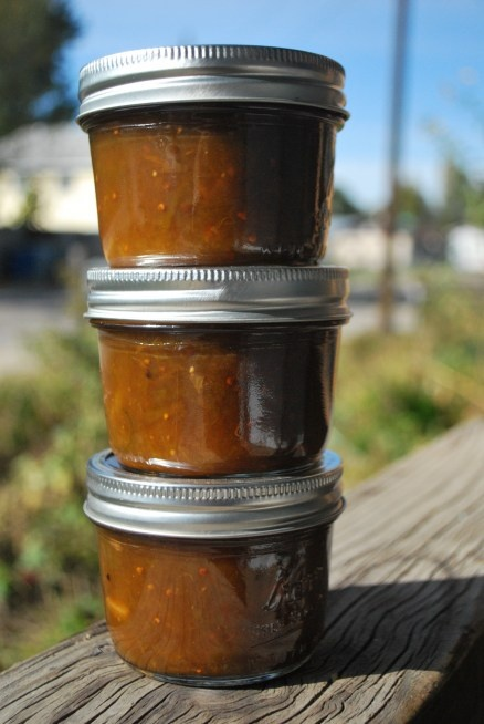 Green Tomato and Apple Chutney | canning and all that good stuff | Pi ...