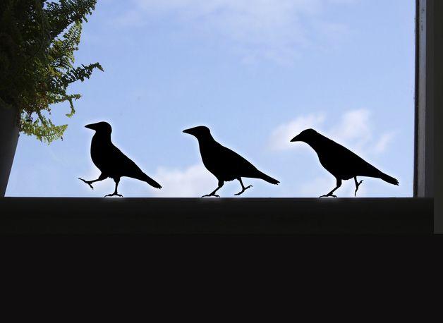 Vögel fenster