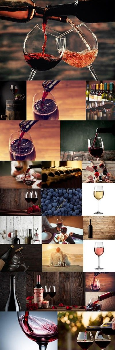 Wine & Winemaking