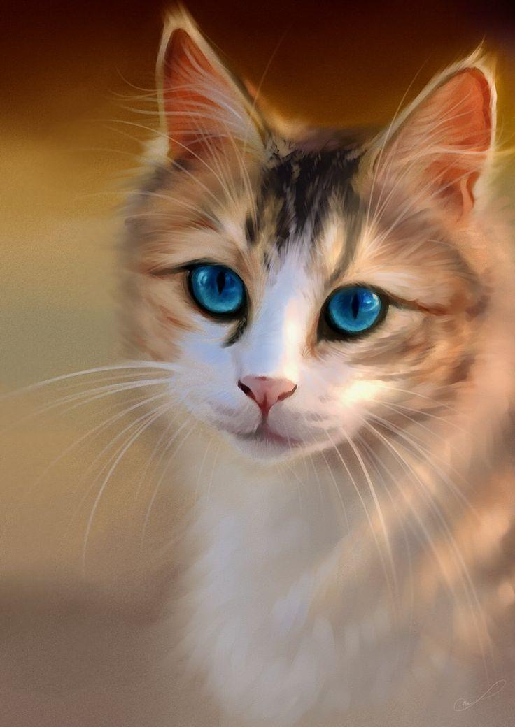 картинки кошек на аватар бумага отличается только