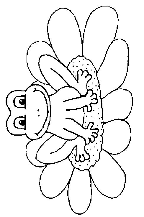 kleurplaat kikker