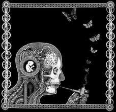 Opeth + Tool = Soen