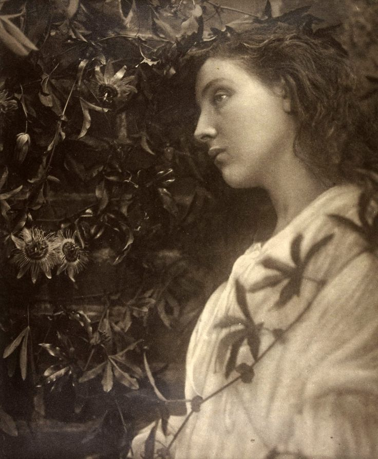 earwigbiscuits:    Maud by Julia Margaret Cameron, 1875  From the exhibition 'A Ballad of Love and Death: Pre-Raphaelite Photography in Great Britain, 1848-1875' at the Musée d'Orsay, Paris (via Art Blart)