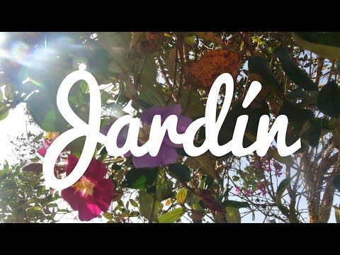 A weekend in Jardín, Antioquia, Colombia | Todd's Travels