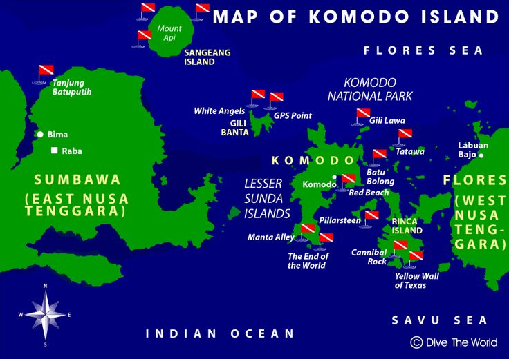 Komodo Indonesia Dive Sites - one of the best in the entire world!