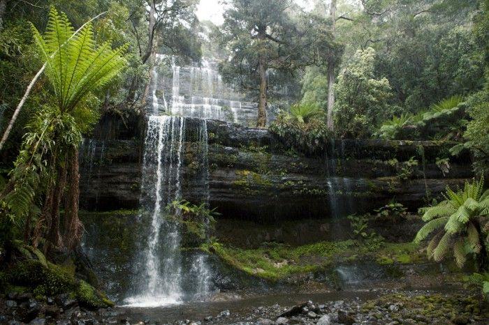 TasTrails – Tasmanian Bushwalking GuideRussell Falls and Horseshoe Falls - TasTrails - Tasmanian Bushwalking Guide