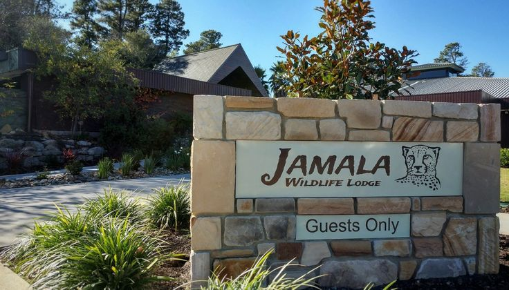 Sleep with the animals: Jamala Wildlife Lodge - plate+plane