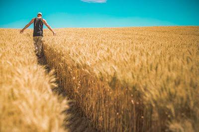 Μηνιαίο αγροτικό ημερολόγιο εργασιών http://ift.tt/2rpCwpQ
