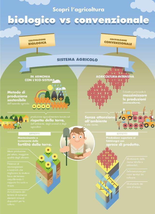 Organic farming versus convenzional farming
