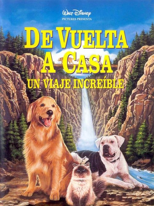 Homeward Bound The Incredible Journey Fuii Movie Streaming The Incredibles Walt Disney Pictures Walt Disney Movies