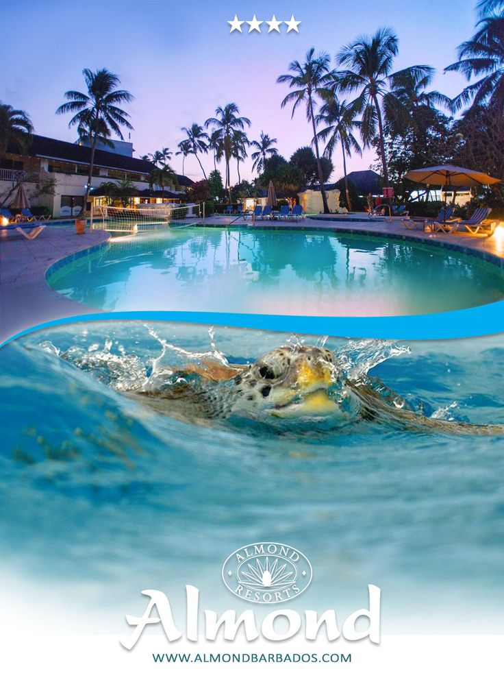 Visit The Almond Beach Resort Today Nestled In Beautiful Barbados Our Pinterest Resorts And