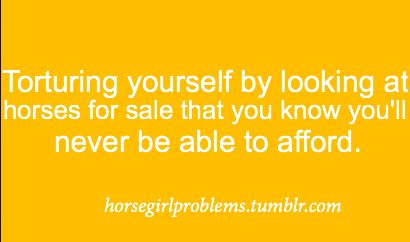 I keep doing this, it is really torture for me because I've always wanted a horse.