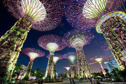 Футуристические прибрежные сады в Сингапуре