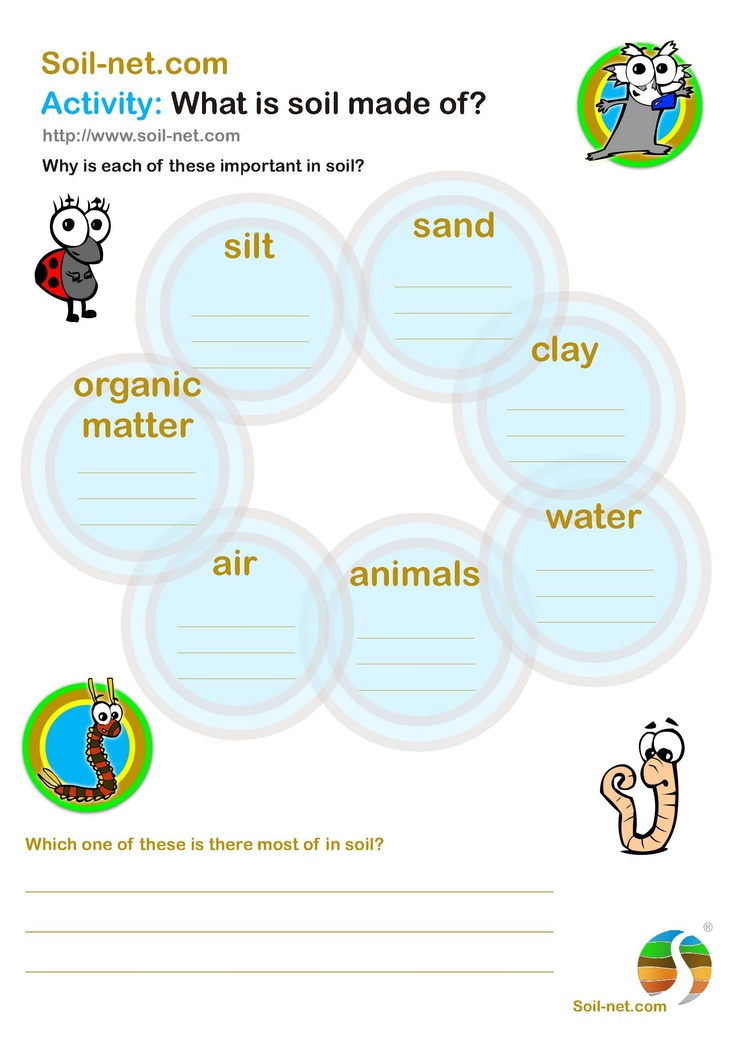 Great worksheet for 2nd grade or 3rd grade when discussing for Soil 2nd grade