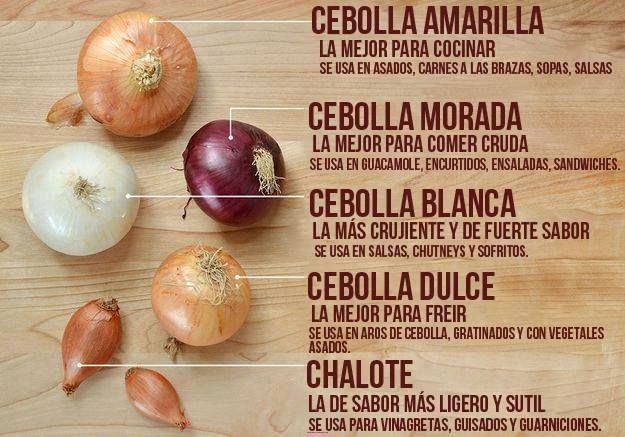 Different kinds of onions and their uses. (Spanish version).  Tipos de cebolla y sus usos.