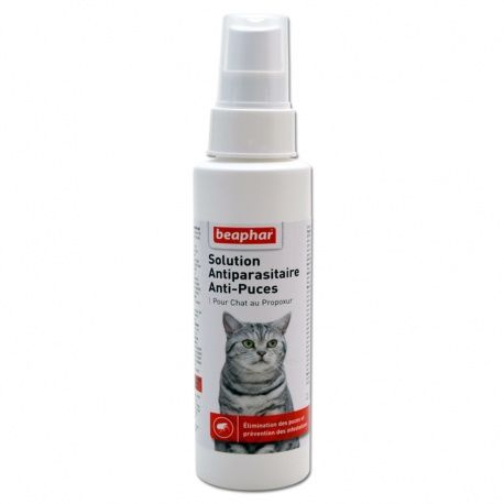 Spray Anti-Puces Chat Beaphar / http://www.animaux-market.com/pipette-anti-puce-chat-100