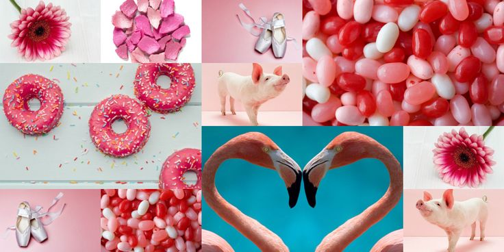 30 Delightful Things that are Pink  - Seventeen.com