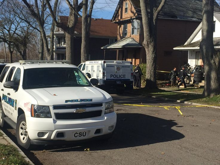 A Niagara Falls Police officer was shot and another attacked by a dog in Niagara Falls following a report ofloose dogs in the area.