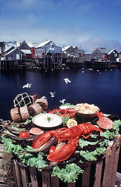Acadian Life