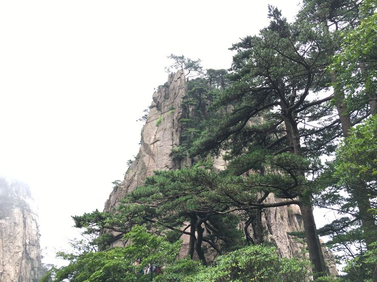It maybe seems unbelievable but it seems like it's painted. Huangshan Mountain, China