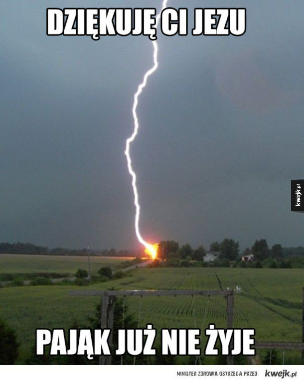 #pajak #kwejk #humor
