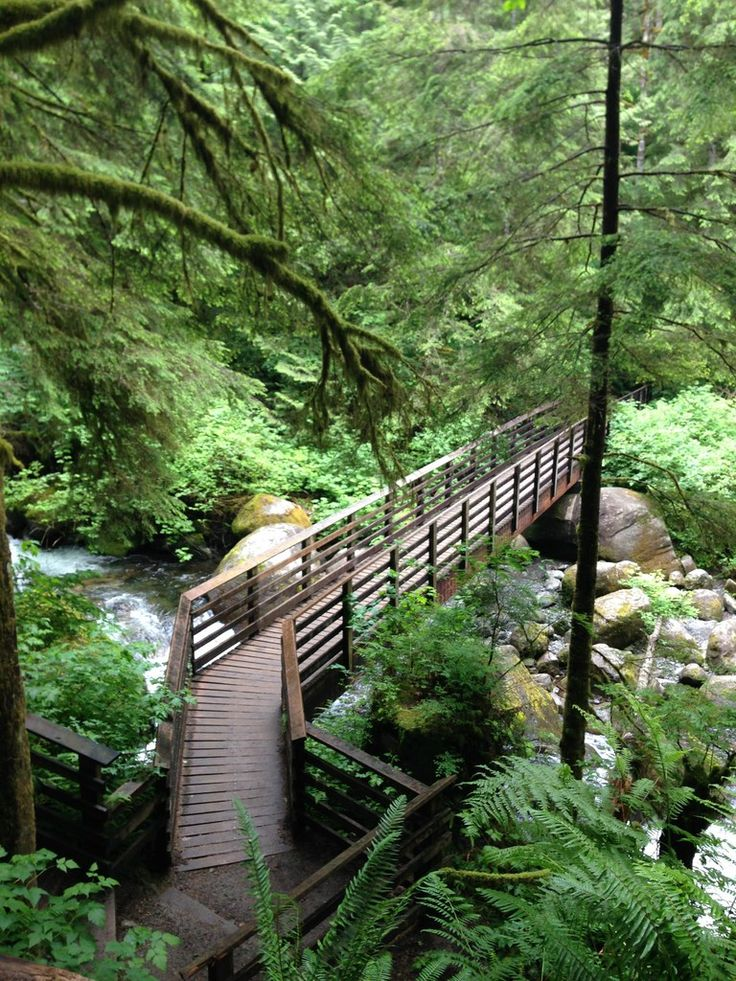 WALLACE FALLS--Lower falls: 5 ml RT, 1300 EG. Mostly uphill so tough work-out, but c did not enjoy. Water too deep for swimming but nice to sit next to falls on rocks. Keep max on leash with rushing water & strict rule/$90 fine if off-leash. We were there 3 hours. Hiked 9/14.