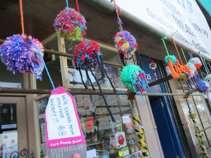 Pompom pets made by children at Appletree Nursery hanging out at Bute Pet Supplies, where Rothesay THI regeneration work is underway