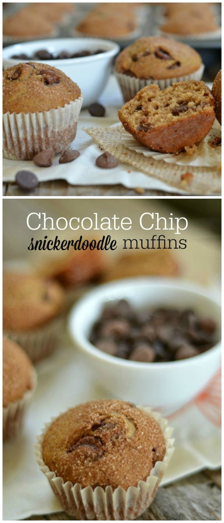 Chocolate Chip Snickerdoodle Muffins are so simple and SO delicious. Make a big batch and freeze them or school lunches or an after school snack! www.mountainmamacooks.com