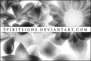 Flora 4 by spiritsighs-stock