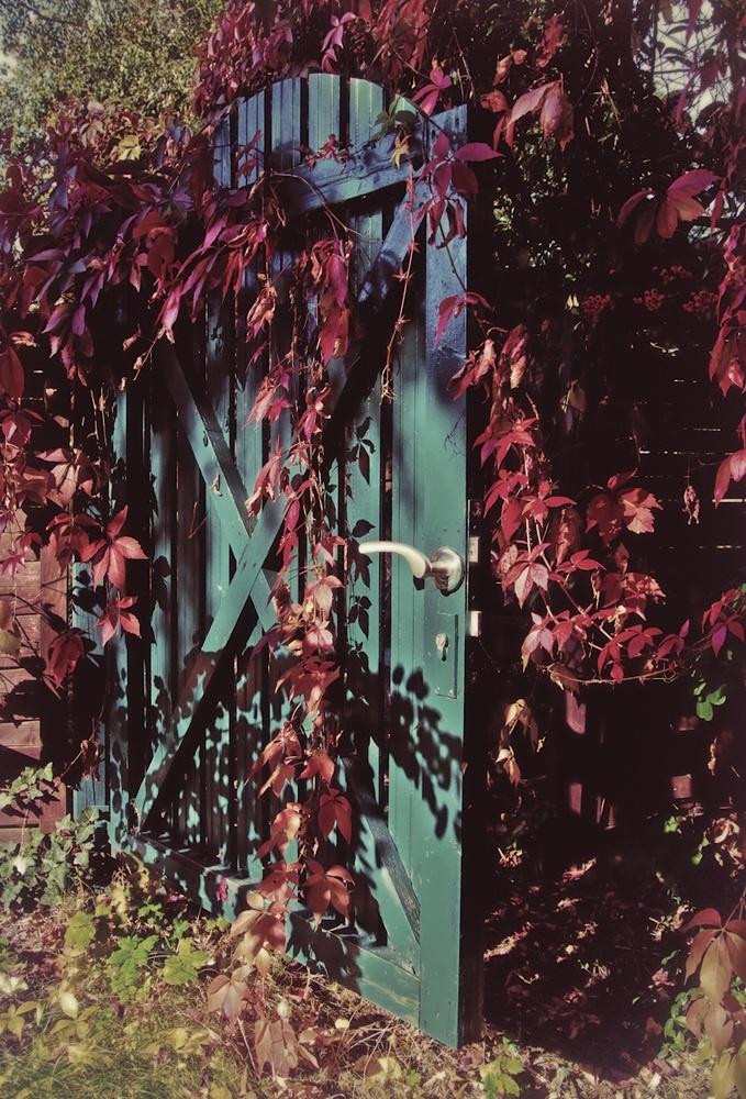 Herbstfarben - Das Gartentor von FotoDX