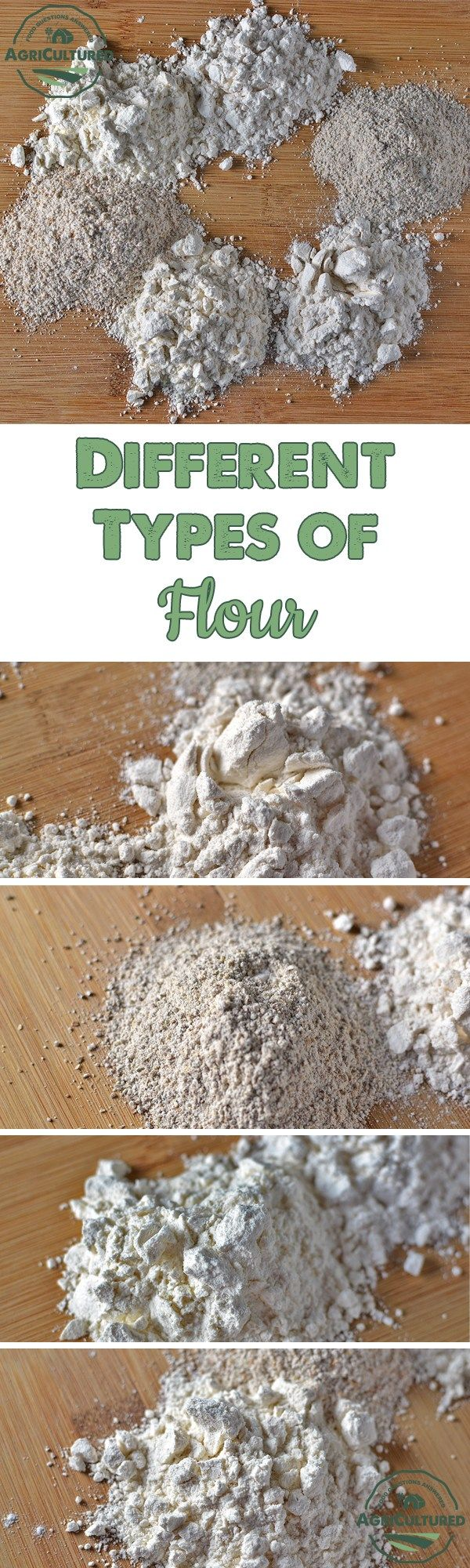 the best type of flour for Here are the essentials on understanding each type of flour for your baking  needs  of baking powder and salt to save you time and guarantee best results.